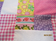 Lady bug quilt 008