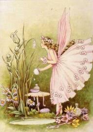 Ida Oulthwaite fairy